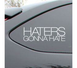 Haters Gonna Hate  Vinyl Deca