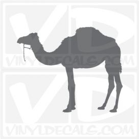 Camel 5 Car Vinyl Decal Sticker