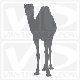 Camel Car Vinyl Decal Sticker