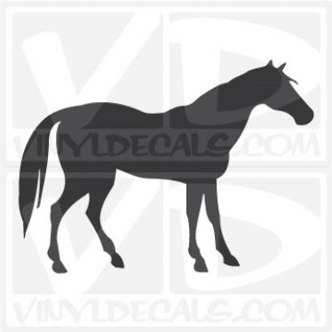 Horse Car Vinyl Decal Sticker